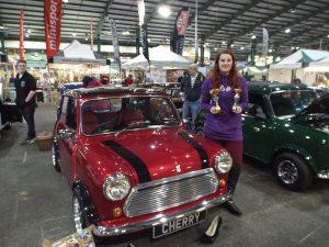 Mini Fair 2016 - show winners