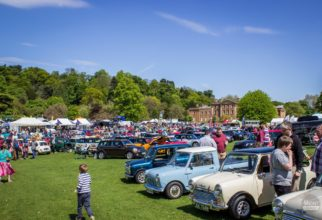 Minis At Himley Park
